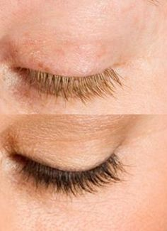 Eyelash Tinting Service at Aspasia's Studio in Campbellville